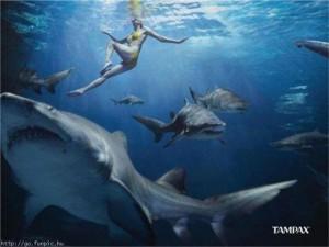 tampax shark ad