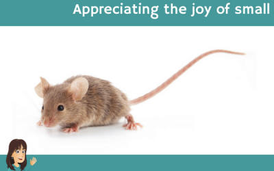 Appreciating the joy of small
